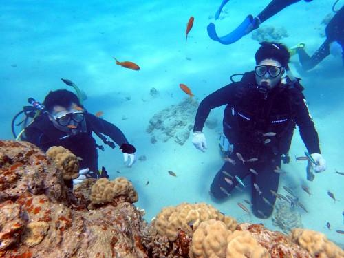 ケラマで体験ダイビング