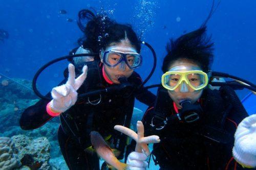 ちびっこ体験ダイビング