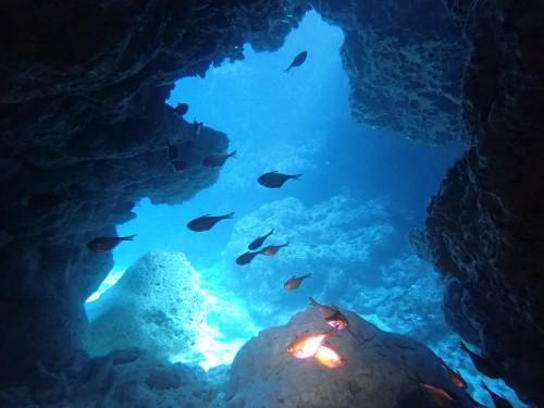 チービシ諸島ラビリンス