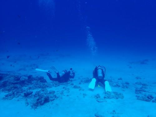 沖縄 ダイバー
