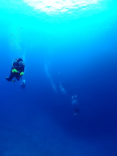 沖縄本島那覇・慶良間ダイビング 那覇シーマリン